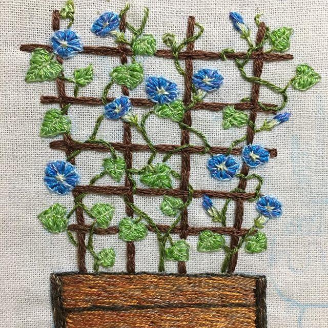 #刺繍絵 途中経過です。 #西洋朝顔 の#ヘブンリーブルー と言うのをモデルにしてみました。 蔓を絡ませる部分が何度も頭が こんがらがりました : : #朝顔 #flower #embroidery #handembroidery #handcraft #embroideryart #embroiderylicious #花 #夏 #ipomoea #ipomoeatricolor #mornigglory #ちくちくくまこ