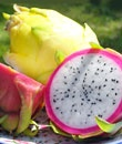 4. Dragon Fruit:   Dragon fruit, or pitaya and strawberry pear, is a thick-skinned fruit produced by cactus plants from the Hylocereus species. In Asia, it's known as dragon fruit because the red color fruit resembles a dragon's flaming fireball, though yellow-skinned pitayas can be found too. But in case you thought pitaya is native to Asia, it's not. The cacti that bear dragon fruits are actually indigenous to southern Mexico, the Pacific side of Guatemala and Costa Rica, and El Savador.