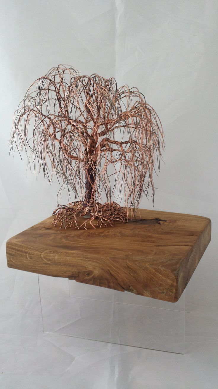 Willow on oak. made in 4 different shades of copper wire. this tree is to be auctioned on Facebook on 1st and 2nd April 2015. @ https://www.facebook.com/HBDIW