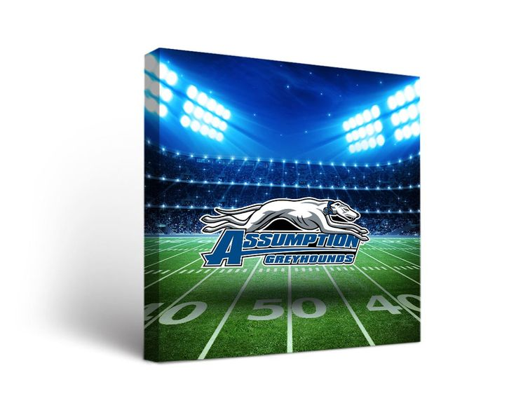 Assumption College Greyhounds Football Stadium Canvas Art Square