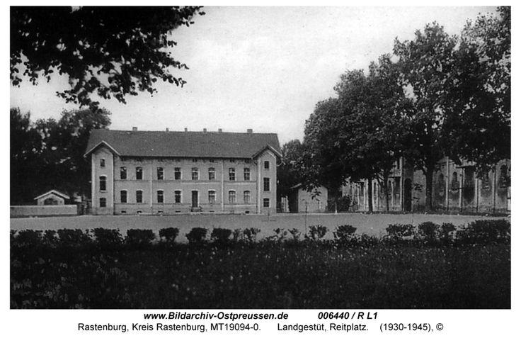 Rastenburg, Landgestüt, Reitplatz