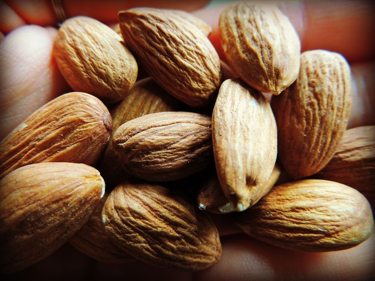That's Nuts! A Complete Guide to Soaking Nuts and Seeds - An article telling you WHY soaking nuts and seeds is so VITAL  IMPORTANT TO OUR BODILY FUNCTIONS