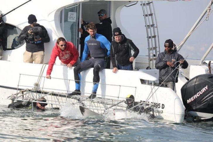 """Michael Phelps vive el """"gran desafío"""" de nadar contra un tiburón blanco"""