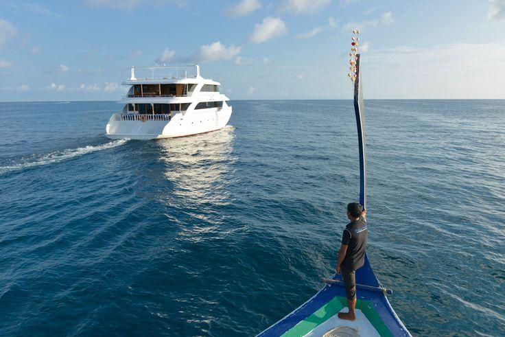 Princess Ushwa - Dive Cruiser from Maldives