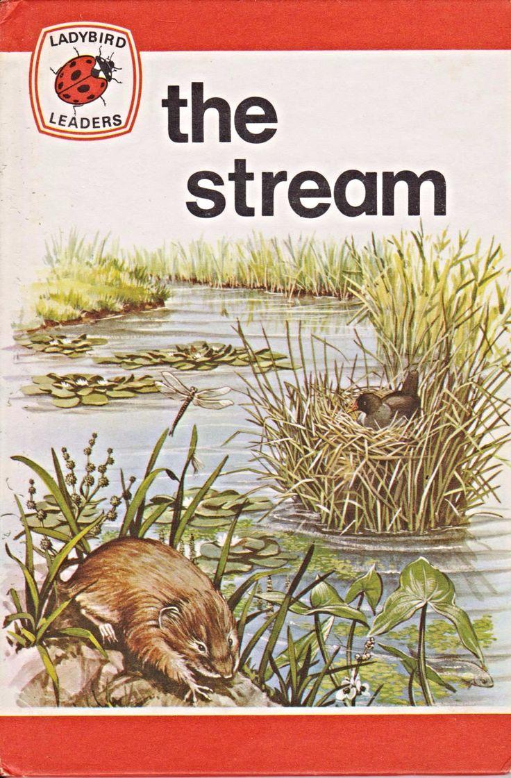 the-stream-vintage-ladybird-book-leaders-series-737-matte-hardback-6220-p.png (1150×1750)