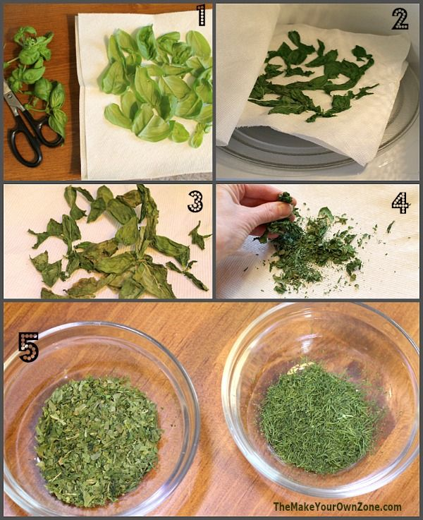 How To Dry Herbs In The Microwave Drying Herbs Drying Fresh Herbs Drying Mint Leaves