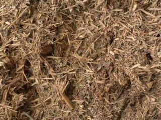 Garden mulching tips