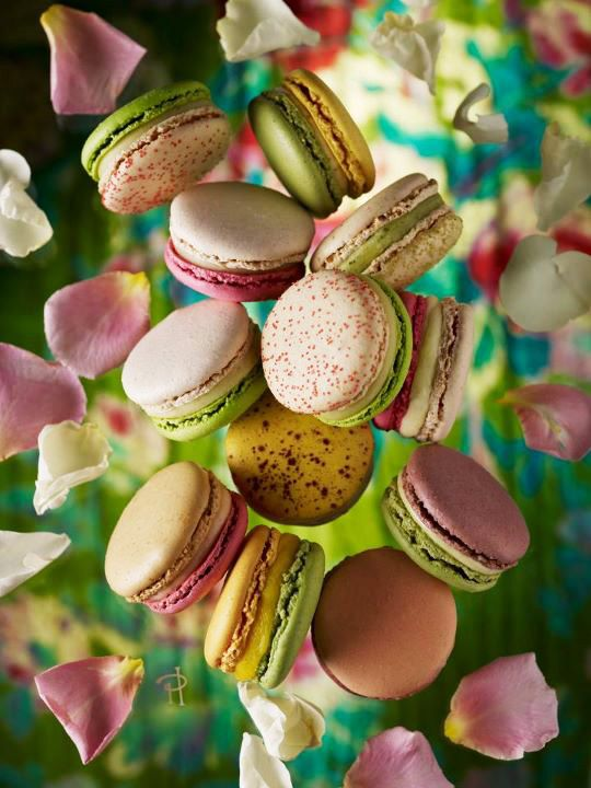 Sweet Spring Garden of Macarons by Pierre Hermé Paris Part 1