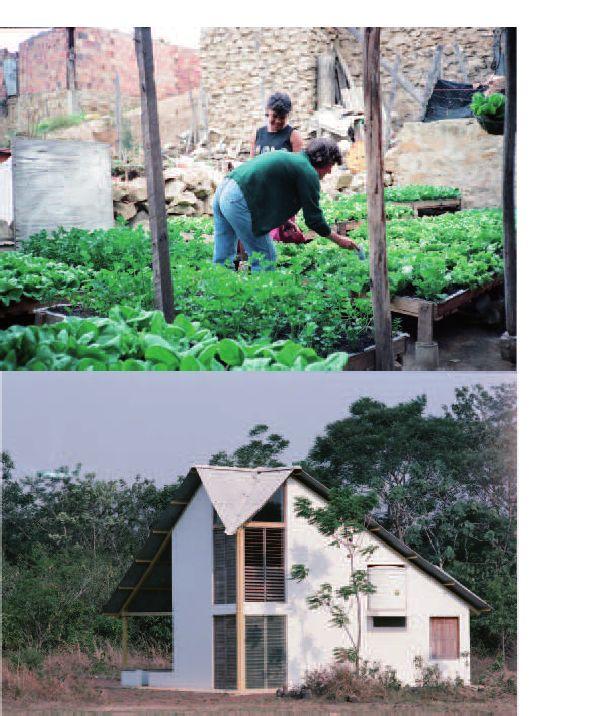 RENACIMIENTO EN EL TRÓPICO | Hidroponía de Gaviotas en barrios pobres de Bogotá y casa bioclimática en Gaviotas, Vichada