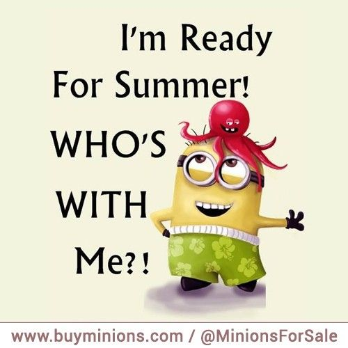 Funny Summertime Quotes: 1000+ Ideas About Summer Jokes On Pinterest