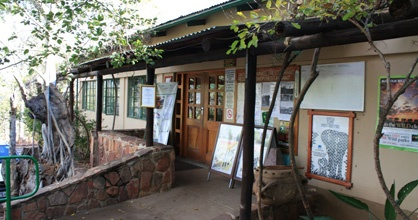"""The camp was built in 1934 on the lower slopes of the hill, and still retains much of its """"old charm"""". This area of the Kruger Park is known for its birding and generally has the highest rainfall in the Kruger Park."""
