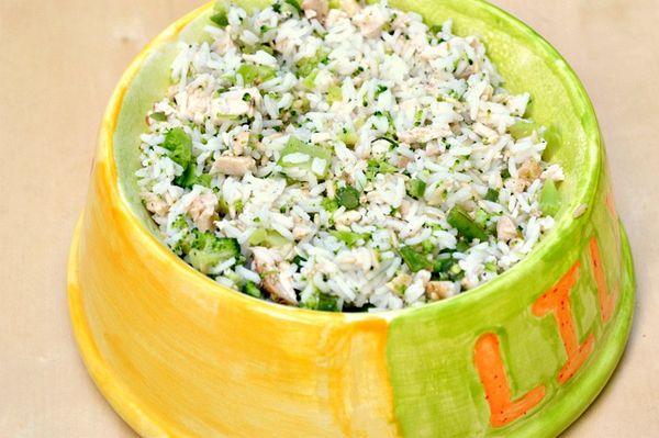 Chicken, Rice, and Veggie Homemade Dog Food Recipe