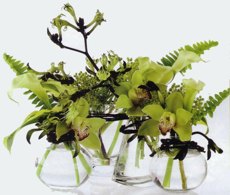 Little modern centerpieces of green orchids, fern and kangaroo's paw. Something like this could be fun in your mix of green vases. We don't have to use orchids, could use spider mums.