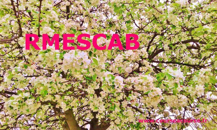 C'est le mois de mai, les pollens volent dans l'air, le rhume des foins est à l'ordre du jour ... mais cela n'empêche pas nos #chauffeurs de livrer vos commandes en #express en temps et en heure. La ponctualité est notre leitmotiv !  Confiez vos #livraisons à #RMESCAB.  Faites un essai et appelez-nous au 09 83 37 94 66 http://www.courseacourse.fr/