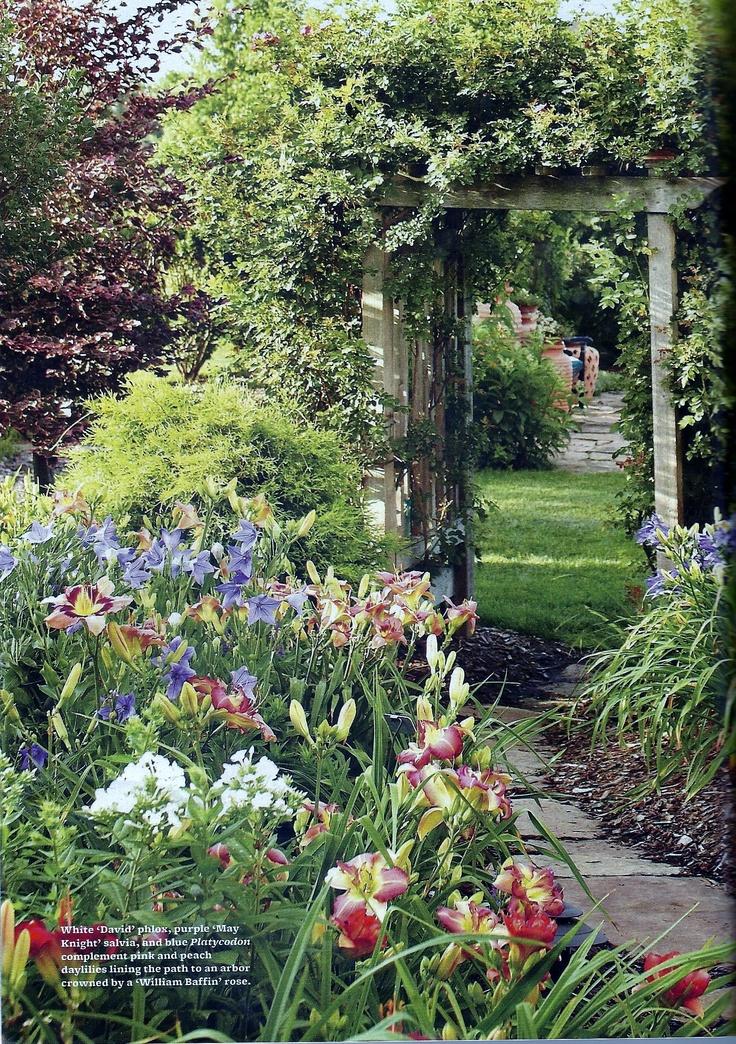 Garden Ideas 2012 224 best plant ideas for house & yard images on pinterest   plants
