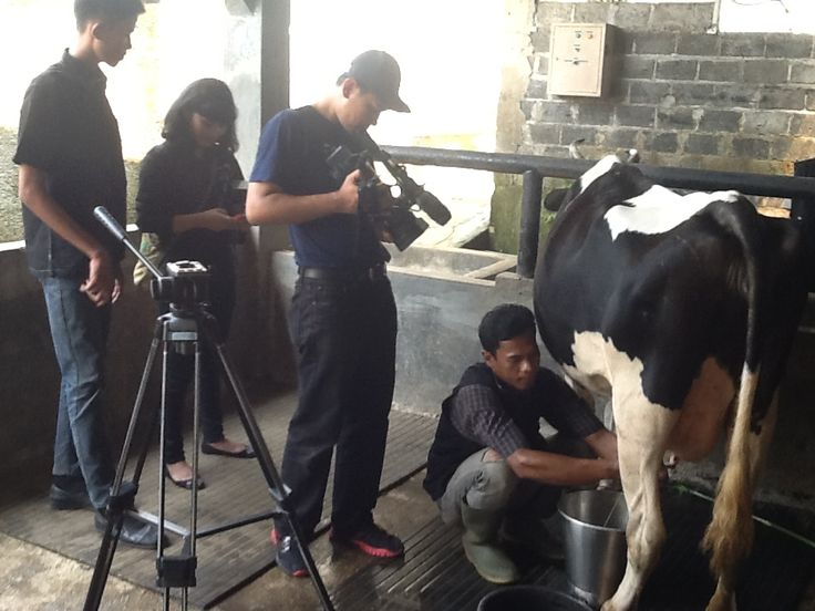 Crew TRANS 7 sedang shooting Sentulfresh Edufarm Program, pada hari rabu 27 Agustus 2014. #edufarm #wisatabogor