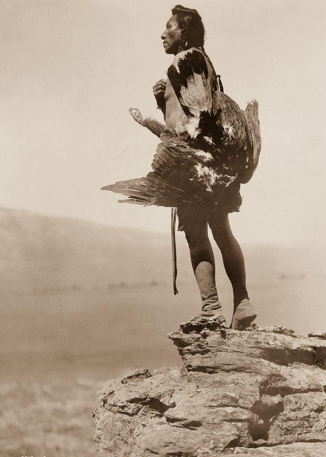 A Hidatsa man with a captured eagle, 1908