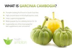 Garcinia Cambogia Benefits, Side Effects and Reviews - The Ultimate Resource Dr. Oz Didn't Want You To See | Health Ambition