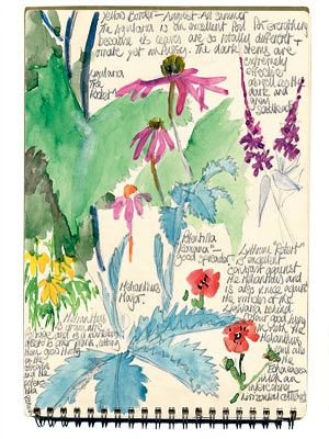A page from Dan Pearson's garden notebook | Telegraph
