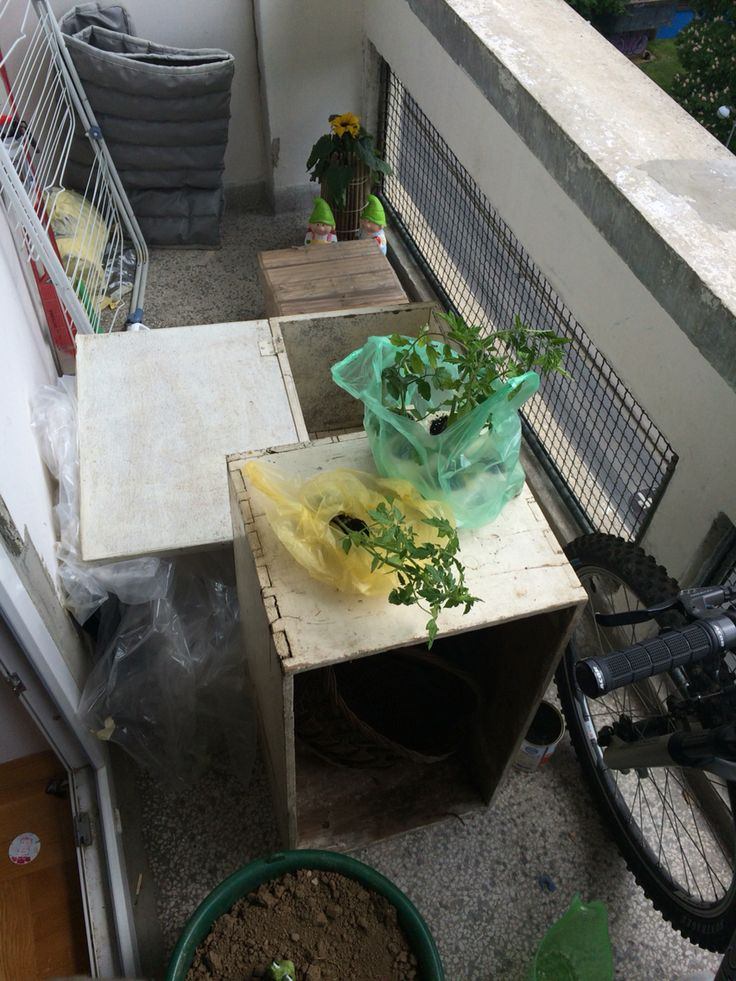 1 Working... As a start you need wooden boxes for soil and plants and of course place where you can put it on balcony