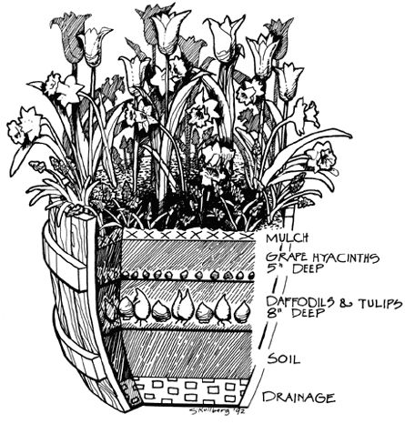 Image Result For Fall Container Gardening