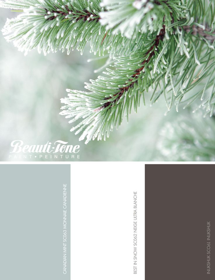 Wrap your walls in the new #BeautiTone winter palette. Fresh frosted hues that calm the soul and captivate the spirit.