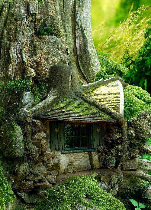 hidden house in a tree<3 gramma always had one in the large oak tree... Memories