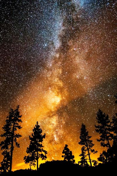 ♥ Fire in the Night Sky - Bill Currier
