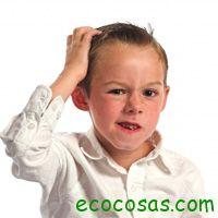 Combatir los piojos naturalmente - Ecocosas