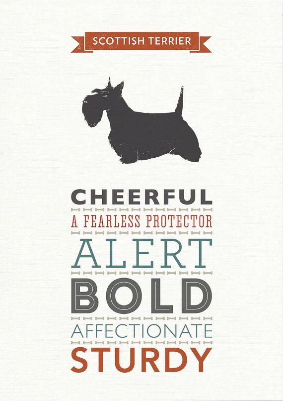 These modern and stylish Scottish Terrier prints present the common characteristics of a Scottie in a range of complimentary typefaces and make a