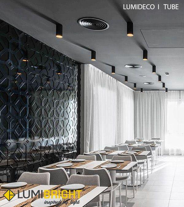Sleek Slim Tube Spotlights Ceilinglight Lumideco Lumibright Decor Artpiece Illumination Led Outdoor Lighting Lighting Manufacturers Lighting Suppliers