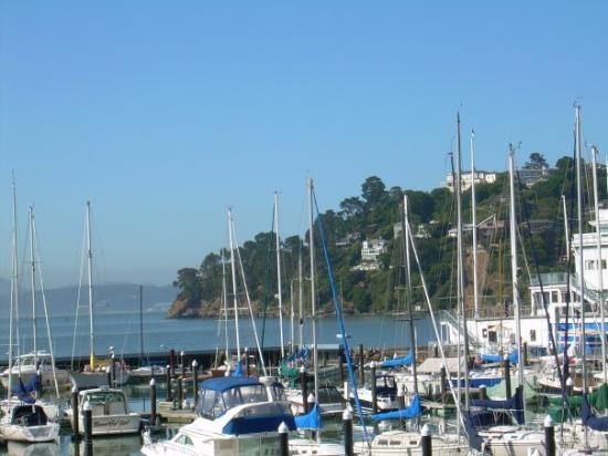 View from outside the hotel window. - Tiburon