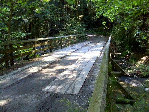 Nisene Marks Park, Aptos, CA    - Loma Prieta Grade Loop Trail, hiked so many times. Including during the Loma Prietta earthquake, Oct 17, 1989.
