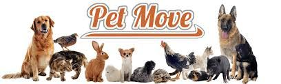 Pet transport service offering animal transport and pet shipping by ground.Safe reliable pet transportation from our affordable pet movers and pet transportation services for your dog transport or cat transport needs.Pet shipping service for shipping pets