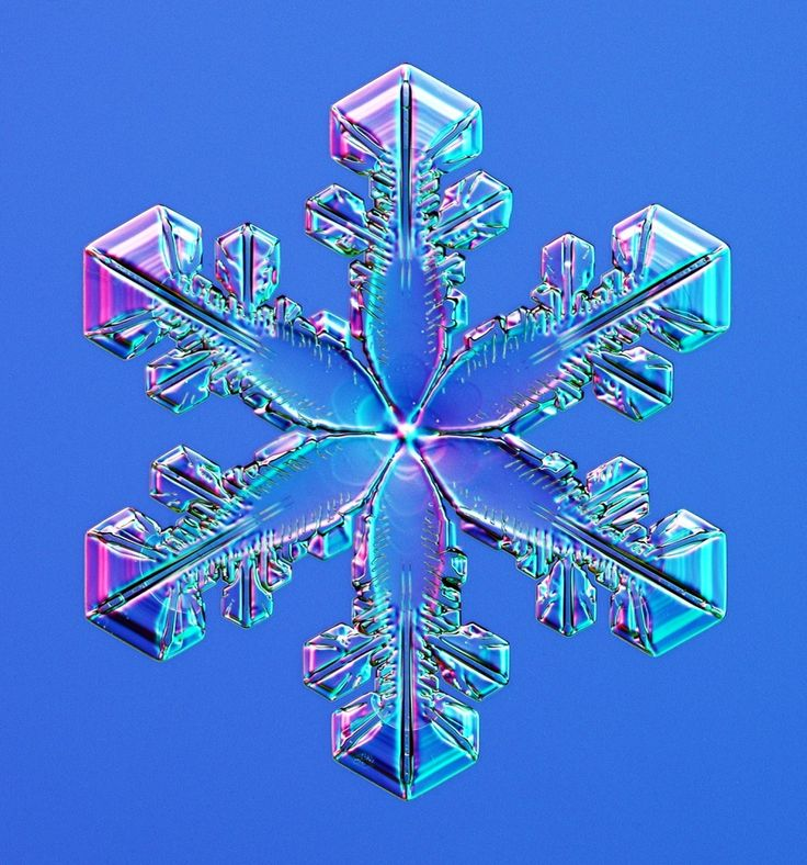 Incredible Close-Up Snowflake Photography (PICTURES)