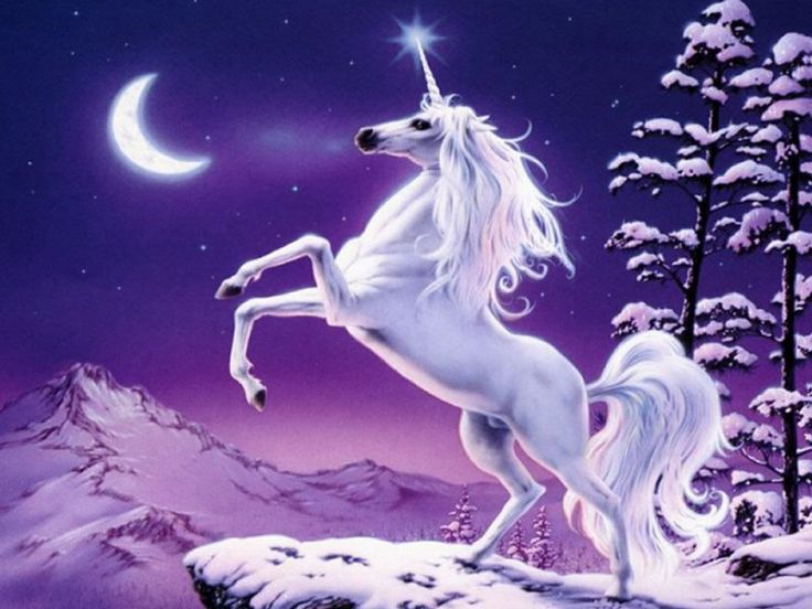 "Mystical Images | The mystical creature ""The Unicorn"""