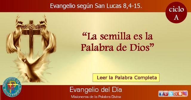 MISIONEROS DE LA PALABRA DIVINA: EVANGELIO - SAN LUCAS  8,4-15