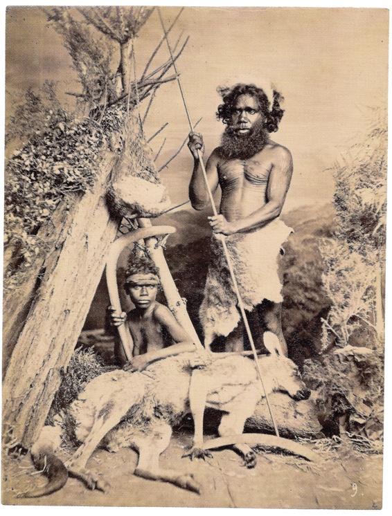Aboriginals Breast 52