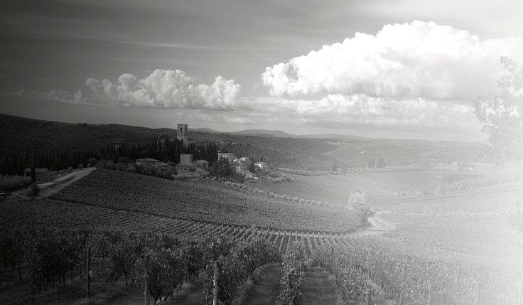 TIGNANELLO - Widely considered the first and one of the best Super Tuscan wines, always a treat http://www.antinori.it/en/26-generazioni/tignanello/tignanello-2009