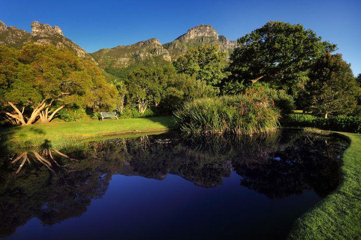 Kirstenbosch Botanical Garden, Cape Town, South Africa  18 Of The World's Most Beautiful Gardens – BoredBug