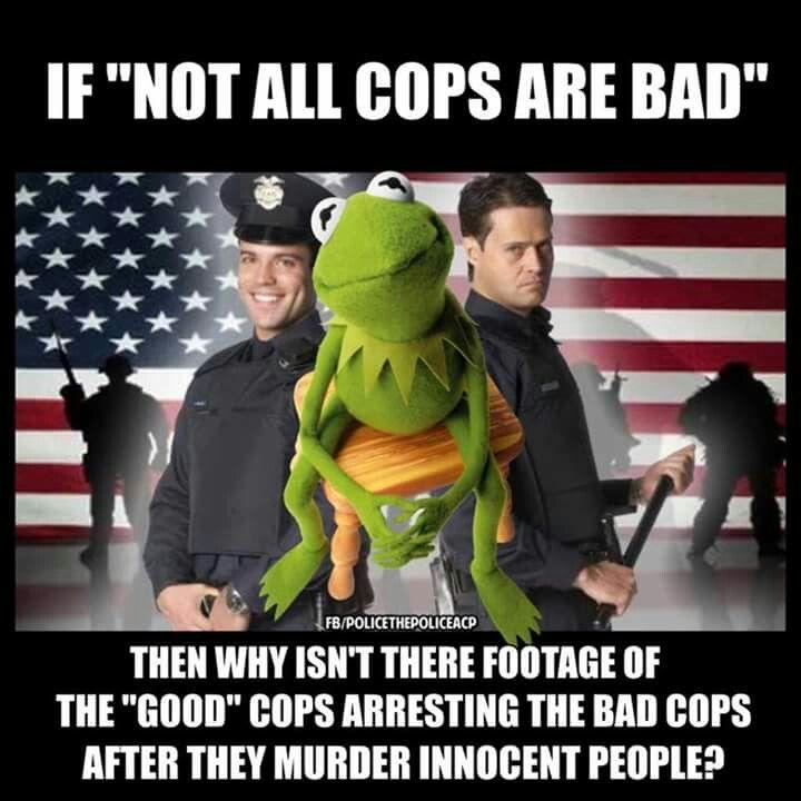Best 25 Muppet Meme Ideas On Pinterest: Top 25 Ideas About KERMIT Meme . . . On Pinterest
