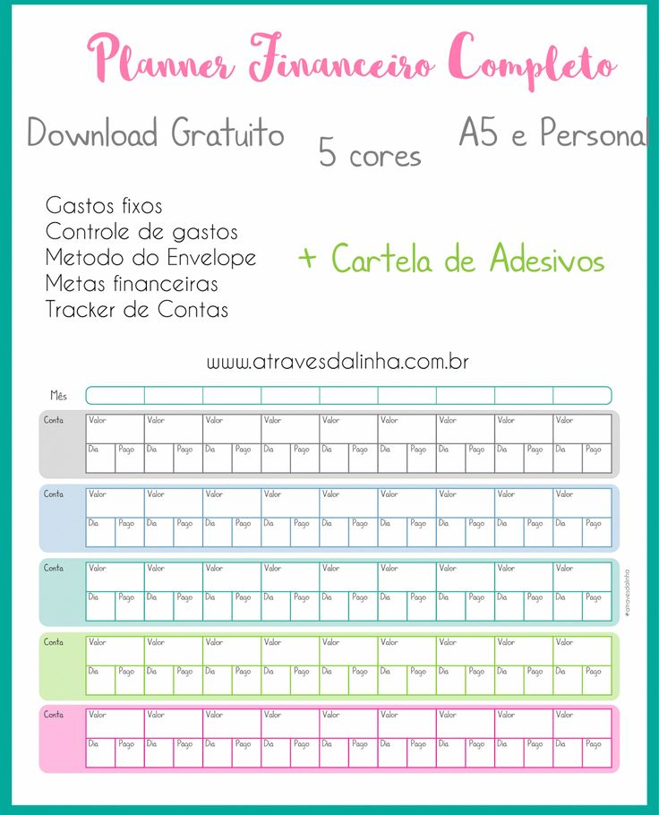 Planner financeiro arquivo em português