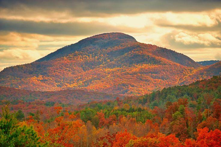 Mt. Yonah, Georgia, USA Sensational photo! Photo Credit: Lisa Amos