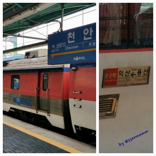 무궁화 열차