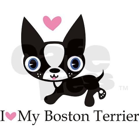 I love my boston terrier!