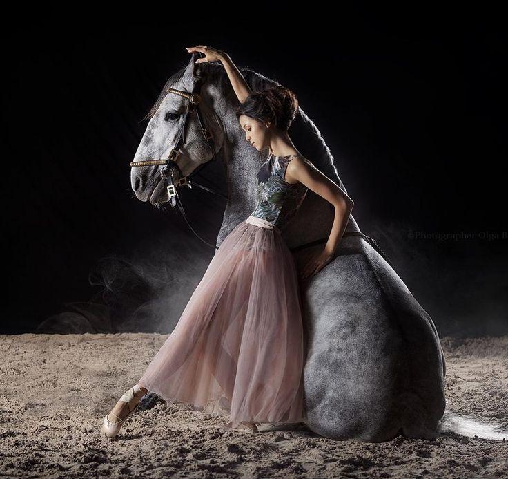 картинки конь танцует лучших рецептов блюда