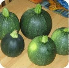 Gem squashes - would love to have one again.