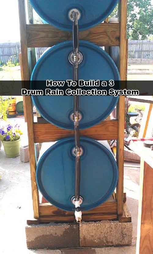 How To Build a 3 Drum Rain Collection System Build a 3 Drum Rain Collection System Did you know the average roof collects 600 gallons of water for ever inch of rainfall? Don't let all that water go to
