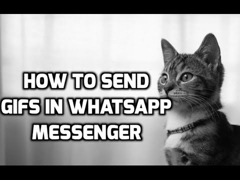 How To Send GIFs in WhatsApp Messenger and Other Apps