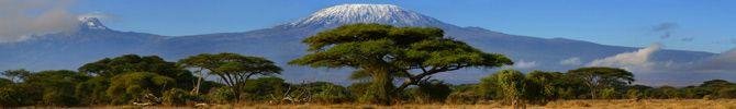 Tanzanie : Climat, budget et guide de voyage